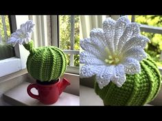 Cactus Crochet / Cactus del Amor - Her Crochet Crochet Tree, Crochet Cactus, Cute Crochet, Beautiful Crochet, Crochet Hooks, Crochet Amigurumi Free Patterns, Crochet Flower Patterns, Crochet Flowers, Crochet Stitches