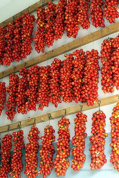 italia - tomatoes in preparation for sauce