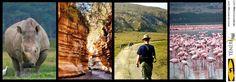 KENYA trekking - Dalle Loita Hills all'Hell's Gate  gennaio 2013  Quattro giorni di trekking tra le Loita Hills più sei giorni di safari a stretto contatto con la natura! In alcuni parchi avrete la possibilità di camminare e pedalare tra zebre, gazzelle e giraffe senza vincoli ed in perfetta autonomia    Scarica il programma  http://www.tenereviaggi.com/Public/Pdf/19_k.pdf