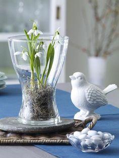 Delicate DIY ideas with snowdrops - Glass Herb Garden Design, Garden Art, Front Garden Entrance, European Home Decor, Spring Home Decor, Hello Spring, Lily Of The Valley, Flower Decorations, Seasonal Decor