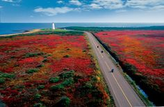 Wondering when is the best time to visit Canada? See this ultimate guide for the best places to go in Canada each month, plus where to stay. Indian Summer, Lonely Planet, Acadie, New Brunswick Canada, Destinations, Atlantic Canada, Atlantic Ocean, Visit Canada, High Road