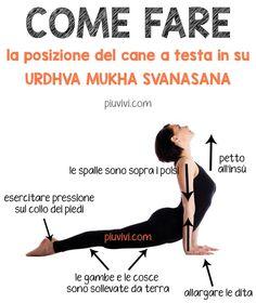 5 Super Simple Exercise Tips Iyengar Yoga, Ashtanga Yoga, Vinyasa Yoga, Yin Yoga, Yoga Meditation, Yoga Fitness, Fitness Tips, Health Education, Physical Education
