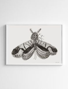 Butterfly Poster Fine Little Day