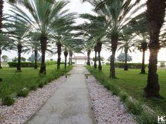To stay: Santa Barbara Beach & Golf Resort   Curacao   www.HolaKim.com