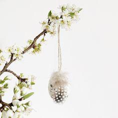 Dein Osterbaum spielt die Hauptrolle wenn es um die frühlingshafte Osterdeko geht. Dekoriere ihn mit den feinen Ostereiern die eine kleine Feder tragen. Die kleinen schwarzen Farbsprenkel sind auf jedem Osteranhänger individuell. Das macht deinen Osterbaum zu einem absoluten Highlight in deinem Wohnraum.   Maße: Länge: 5,5 cm  Breite: 4 cm  Farbe: Weiß mit Feder Inhalt: 4 Stk. Dandelion, Gold, Flowers, Plants, Decorating, Dandelions, Plant, Taraxacum Officinale, Royal Icing Flowers