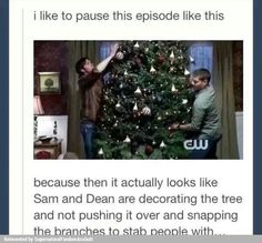 ''It actually looks like Sam and Dean are decorating the tree and not pushing it over and snapping the branches to stab people with.'' / 3.08 : A Very Supernatural Christmas