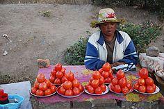 Marchande de tomates