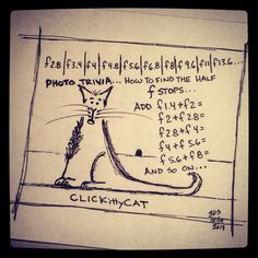 Photo Trivia: impress your photo buddies... Add the f-stops together to get the half f-stops. #CLICKittyCAT.com #comic by S. Dirk Schafer.                #photography