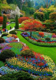 Beautiful pictures Cancer Chat is part of Most beautiful gardens - Most Beautiful Gardens, Beautiful Flowers Garden, Amazing Gardens, Diy Flowers, Blue Flowers, Beautiful Landscape Wallpaper, Beautiful Landscapes, Dream Garden, Garden Art