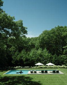 23+douglas+friedman+pool.jpg (314×400)