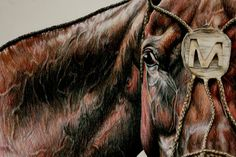 a blog that Linzay is mentioned in    http://www.facebook.com/pages/Linzay-Marks-Equine-Art/320407244640470?sk=wall