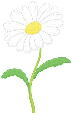 Flower Drawings Tutorial Learn how to draw a daisy - beginning with the top composed of two simple ovals, and then moving down to the stem, in this simple step by step flower drawing lesson. Daisy Flower Drawing, Flower Drawing Tutorials, Flower Sketches, Drawing Flowers, Flower Drawings, 3d Drawings, Cartoon Drawings, Pencil Drawings, Drawing Lessons
