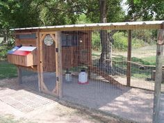 This. This is the coop I want!
