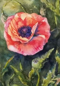 """Dancing Poppies"" 5"" x 7"" Watercolor Original Artwork – Christy Sheeler Art.  Summer favorite from the garden in reds and oranges.  Click to see more!"
