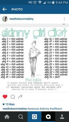 blog pro ana perdre du poids