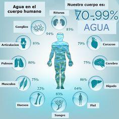 Nuevas tecnologías de prevención al servicio de la salud del individuo El Agua…