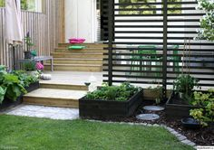 Small yard garden and landscaping