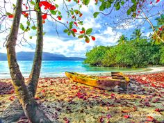 La Playita Fishing BoatsAn arresting panorama beach photo at La Playita in Las Galeras, caribbean colors calling your name to visit. This beautiful little piece of heaven away from the overcrowded vistas seen on many beaches in the Dominican Republic is my perfect spot for a vacation. Norma Brandsberg nbrandsberg@gmail.com