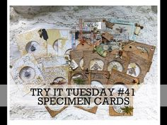 TRY IT TUESDAY #41 Specimen/coin cards Loads of Techniques - YouTube Journal Covers, Journal Pages, Junk Journal, Journals, Art Journal Tutorial, Coin Card, Right Brain, Journal Inspiration, Ephemera