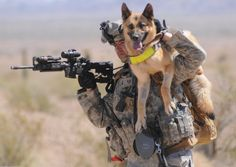 Really want to read 'Soldier Dogs' after the author's interview on the Daily Show the other night...