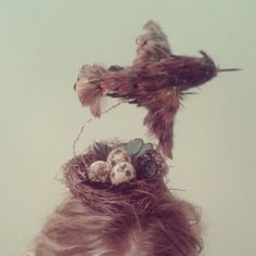 Perfect Ornithologist Hat