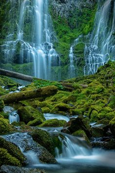 Proxy Falls Oregon USA // Greg Hochstein