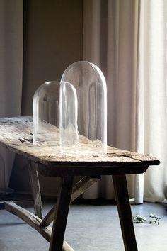 Glass Cloche and rustic wood table. Glass Bell Jar, The Bell Jar, Glass Domes, Bell Jars, Interior Design Studio, Interior Design Inspiration, Home Decor Inspiration, Wabi Sabi, Rustic Bench