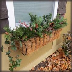 """Nice way to keep the """"green"""" thing going for the holidays.... deck window boxes with greens and mason jar lighting .. or run a set of white twinkle lights throughout."""