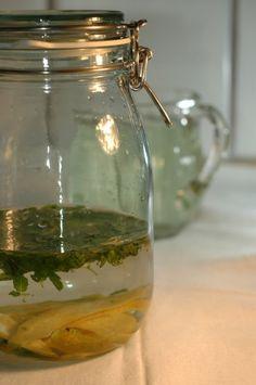 Myntelikør   lækker opskrift   Find den på Maduniverset Frisk, Bitter, Mason Jars, Food And Drink, Cocktails, Liquor, Cocktail, Mason Jar, Glass Jars
