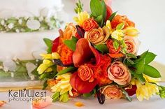 ❧❧These are so beautiful, I love the colors...  thefleurist.blogspot.com