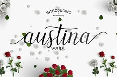 Austina - Free Font of The Week from FontBundles.net
