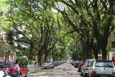 30 lugares e passeios para amar (ainda mais) Porto Alegre | Donna
