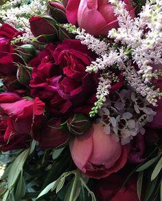 XMAS BLOOMS⠀⠀⠀⠀⠀⠀⠀⠀ ⠀⠀⠀⠀⠀⠀⠀⠀⠀ ⠀⠀⠀⠀⠀⠀⠀⠀⠀ ⠀⠀⠀⠀⠀⠀⠀⠀⠀ #flowers #blooms #florist #weddingflowers #flowerdesign #floraldesign #flowersofinstagram #wedding  #roses #rose  #bouquet #weddingbouqet #gardenrose  #moodygrams #colour #pink #pinktones  #texture #weddinginspiration #weddinginspirations #weddinginspo #weddingideas #weddingseason  #pinkflowers  #redflowers #weddingplanner  #flowerarranging #rubyandjames #snapseed