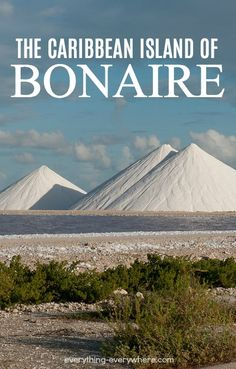 Bonaire is one of the overseas territories of the Netherlands in the Caribbean region. Want to know what you can see and do on your travel to Bonaire? Read on to find out…