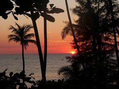 Wunderschöne Sonnenuntergänge sind garantiert #taipan_burma #burma #ngapalibeach