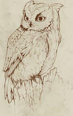 anatomie tutorial owl - Поиск в Google