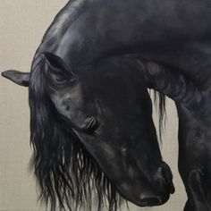 "'Ma Chum' Friesen stallion original oil painting 24x24"" on natural linen by Equine Artist Tony O'Connor. Prints available at: http://white-tree-studio-online-store.myshopify.com/products/ma-chum-ii"
