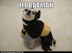 Image result for i'm batman meme