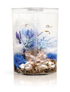 biUbe Pure Aquarium with Halogen Light, Clear, 9 Gallons Tropical Fish Aquarium, Saltwater Aquarium, Aquarium Fish Tank, Freshwater Aquarium, Fish Tanks, Biorb Fish Tank, Fish Tank Themes, Fish Tank Design, Aquarium Design