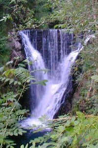 Cascade du saut de lOgnon Située sur l'Ognon, rivière de montagne qui prend sa source à 1 060 m d'altitude, dans le parc naturel régional des Ballons des Vosges. Après un difficile début de parcours, l'Ognon se déchiquette en une magnifique cascade de 14 m, le Saut de l'Ognon, à la sortie d'une étroite gorge rocheuse. Accès : Située entre la ville de Lure et celle du Thillot, L'accès se situe à l'entrée sud du village de Servance par un sentier agréable et documenté.