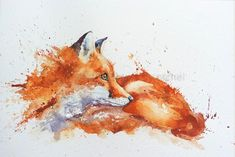 Watercolor fox painting - How to paint a robin in 8 easy steps – Watercolor fox painting Watercolor Paintings Of Animals, Fox Painting, Watercolor Animals, Animal Paintings, Animal Drawings, Fox Watercolour, Art Plastic, Fox Drawing, Fox Pictures