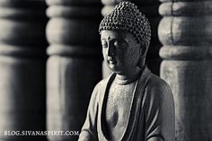 Unlike Hinduism or other eastern religions, Buddhism does not have a central god. That doesn't mean that they're opposed to a god, it just means they have no reason to have a god.