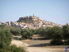 MonroyoMonroyo (Mont-roig) es una localidad y municipio español de la provincia de Teruel, Aragón, de la comarca de Matarraña, de larga historia cuenta con Castillo de Monroyo.