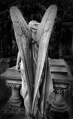 cemetery on Pinterest | Graveyards, Bonaventure Cemetery and Angel ...