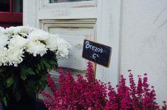 Salon des fleurs // Madrid