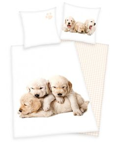 his adorable Puppies single duvet cover set features a photographic image of a trio of golden retriever puppies on a white background, with a different image on the pillowcase. The reverse of the duvet cover has a pretty pale yellow checked design on a white background.