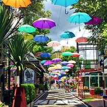 Chiang Mai, Thailand   JustOneWayTicket.com