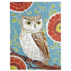 owl by Pier 1 Imports