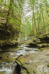 - Hocking Hills Stream  by Tom Clark