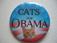 yellow tabby cat for obama button by thedogcoatlady on Etsy, $1.00